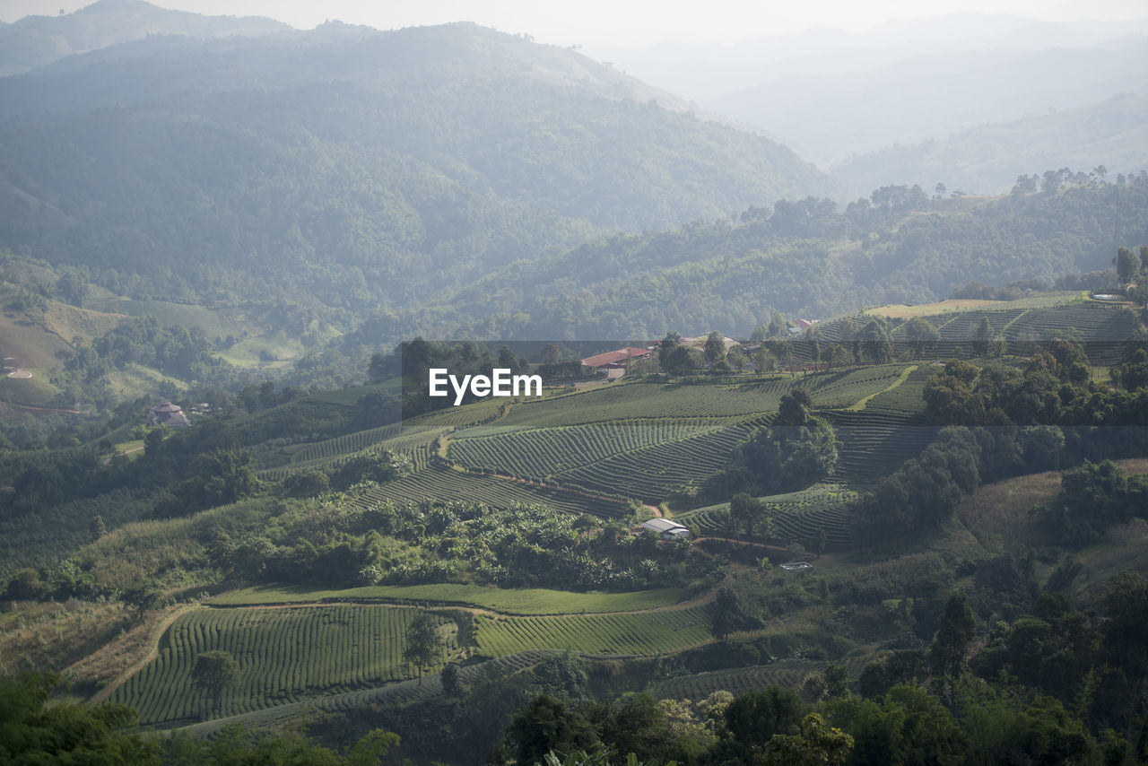 Scenic View Of Agricultural Field With Mountains In Background