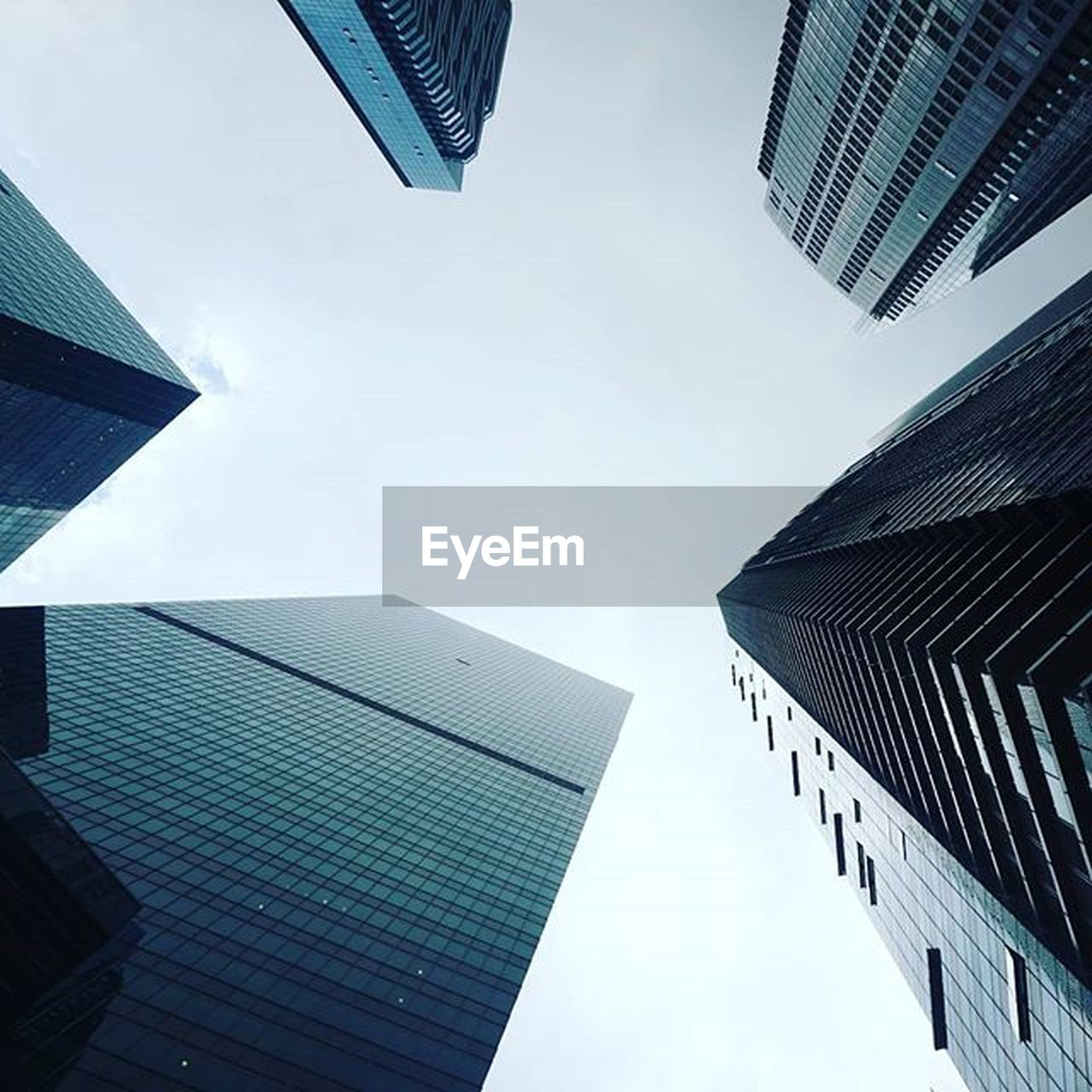 architecture, skyscraper, building exterior, city, modern, built structure, tall, outdoors, growth, low angle view, downtown district, city life, no people, sky, day, office park, cityscape
