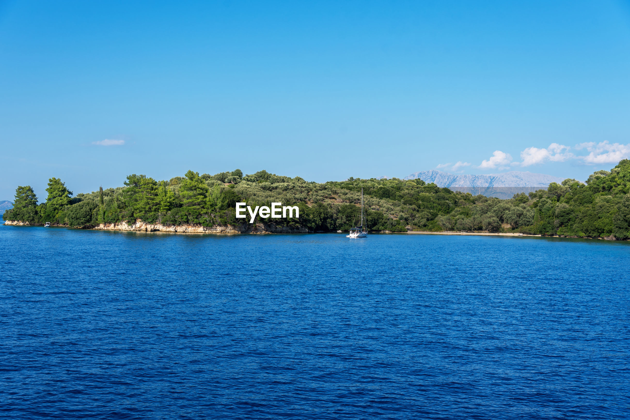 SCENIC VIEW OF SEA BY TREES AGAINST BLUE SKY