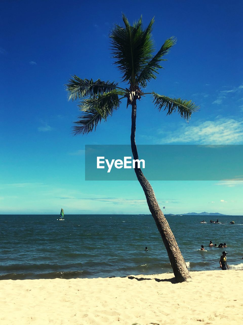 water, sea, beach, land, sky, tropical climate, palm tree, beauty in nature, horizon, sand, scenics - nature, horizon over water, tree, tranquility, nature, tranquil scene, plant, incidental people, day, outdoors, coconut palm tree