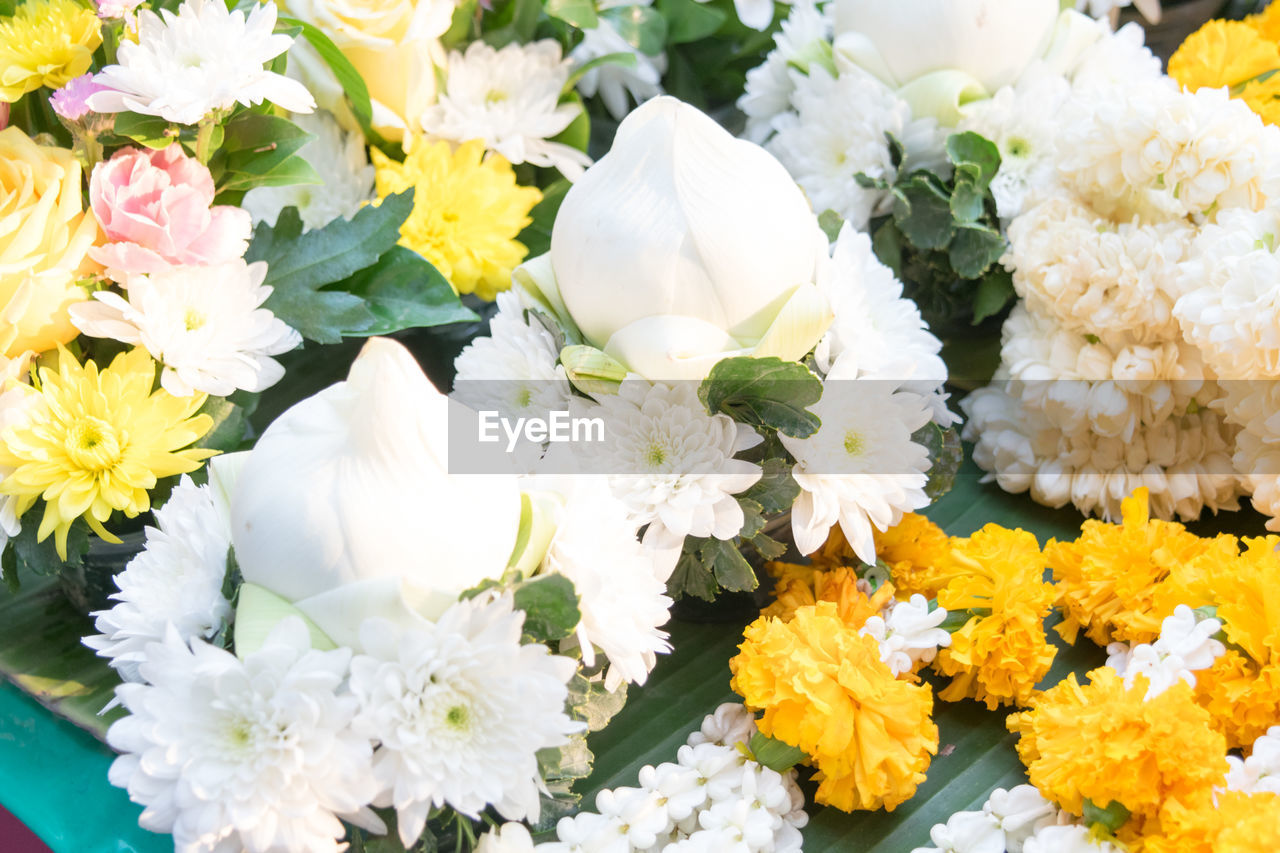 flowering plant, flower, freshness, vulnerability, white color, fragility, beauty in nature, plant, petal, flower head, inflorescence, nature, close-up, no people, high angle view, yellow, day, outdoors, flower arrangement, multi colored, softness, bouquet