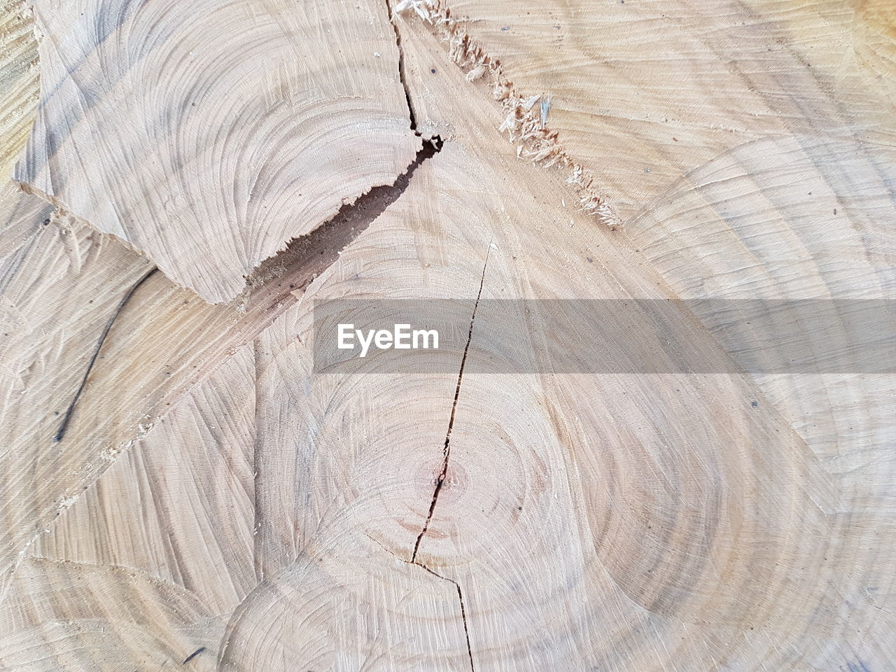 wood - material, timber, textured, tree ring, pattern, brown, backgrounds, wood grain, lumber industry, cross section, full frame, tree, nature, hardwood, concentric, tree stump, no people, day, close-up, outdoors