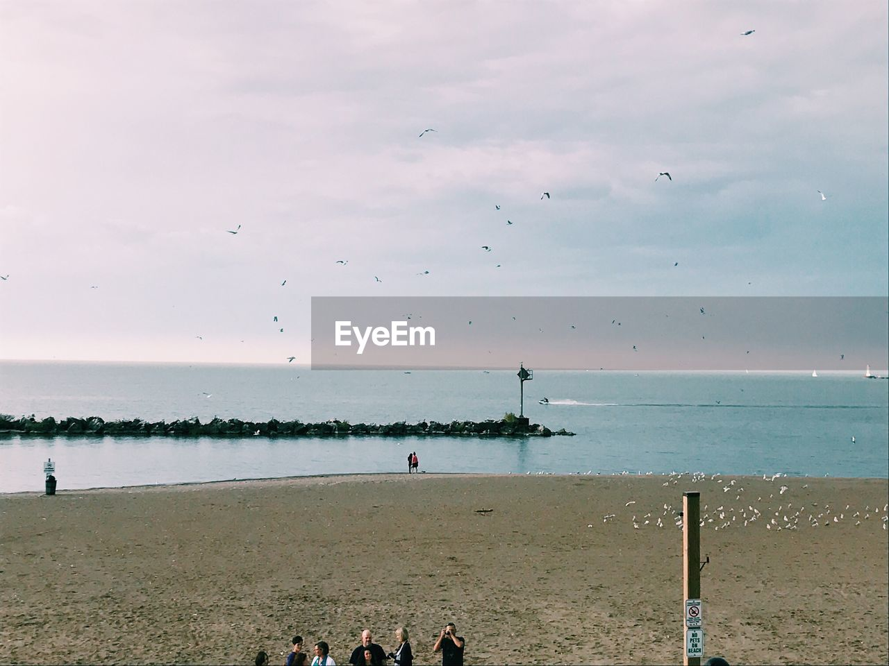 water, sea, group of people, beach, sky, land, real people, horizon over water, horizon, nature, cloud - sky, crowd, men, large group of people, scenics - nature, vacations, leisure activity, lifestyles, trip, outdoors