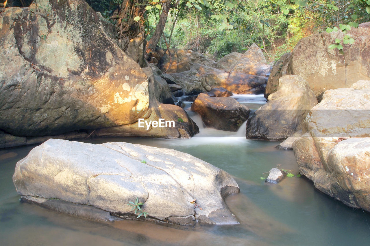 water, rock, solid, rock - object, nature, beauty in nature, river, day, scenics - nature, tree, no people, rock formation, outdoors, waterfront, flowing water, tranquility, forest, plant, stream - flowing water, flowing
