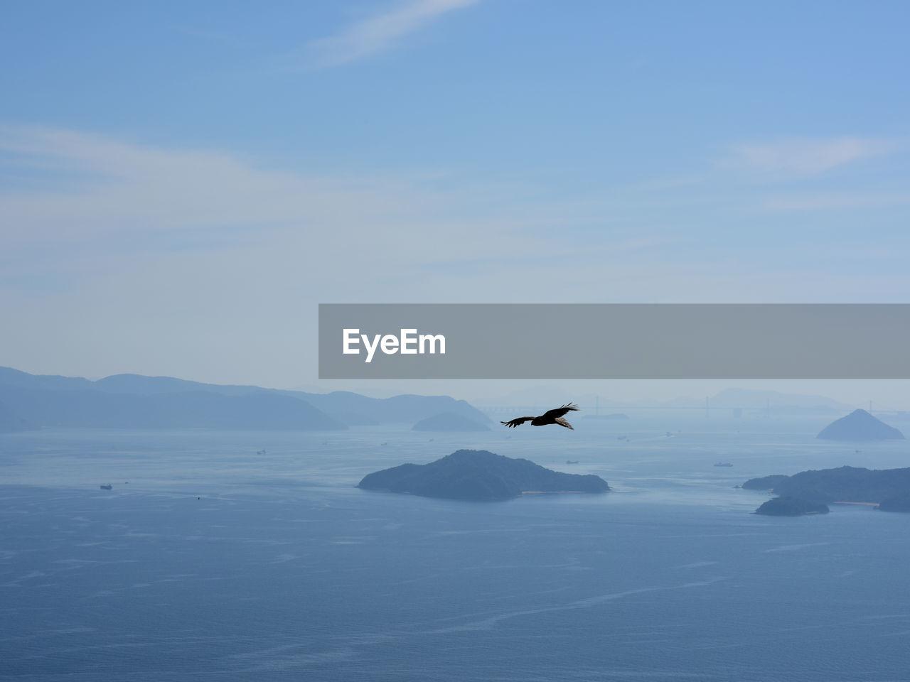 Bird flying over islands and ocean against sky
