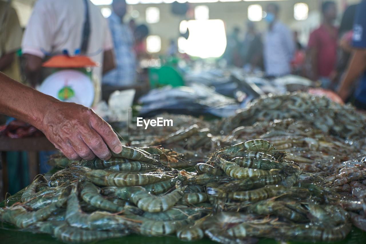 MAN WORKING AT FISH MARKET