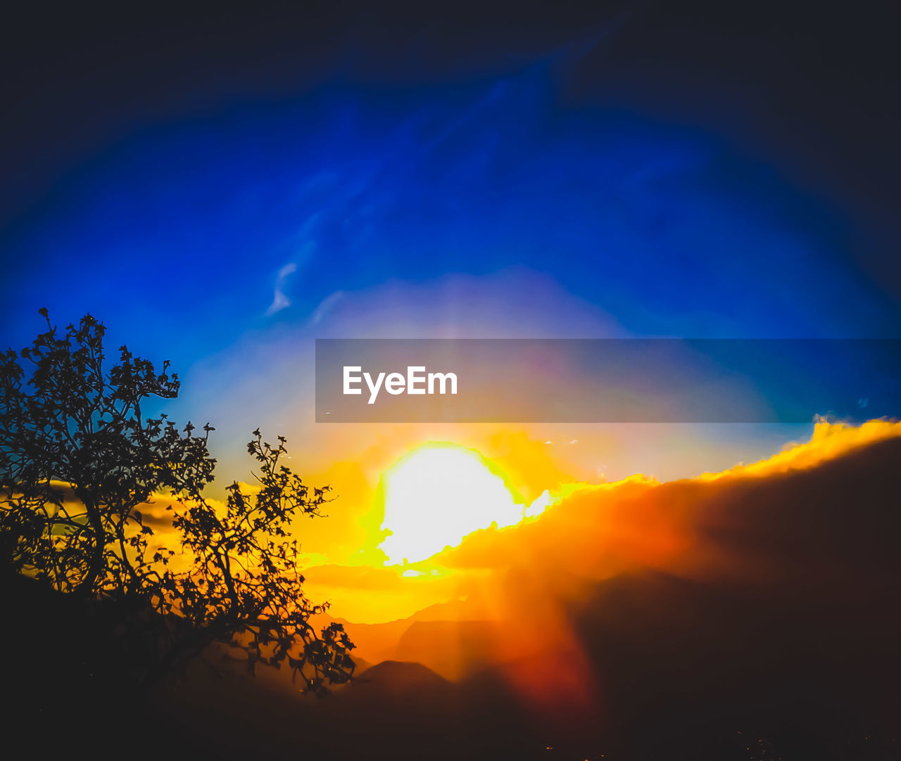 sunset, sky, beauty in nature, orange color, scenics - nature, tree, silhouette, plant, cloud - sky, tranquility, nature, tranquil scene, no people, idyllic, sunlight, low angle view, sun, outdoors, yellow, blue