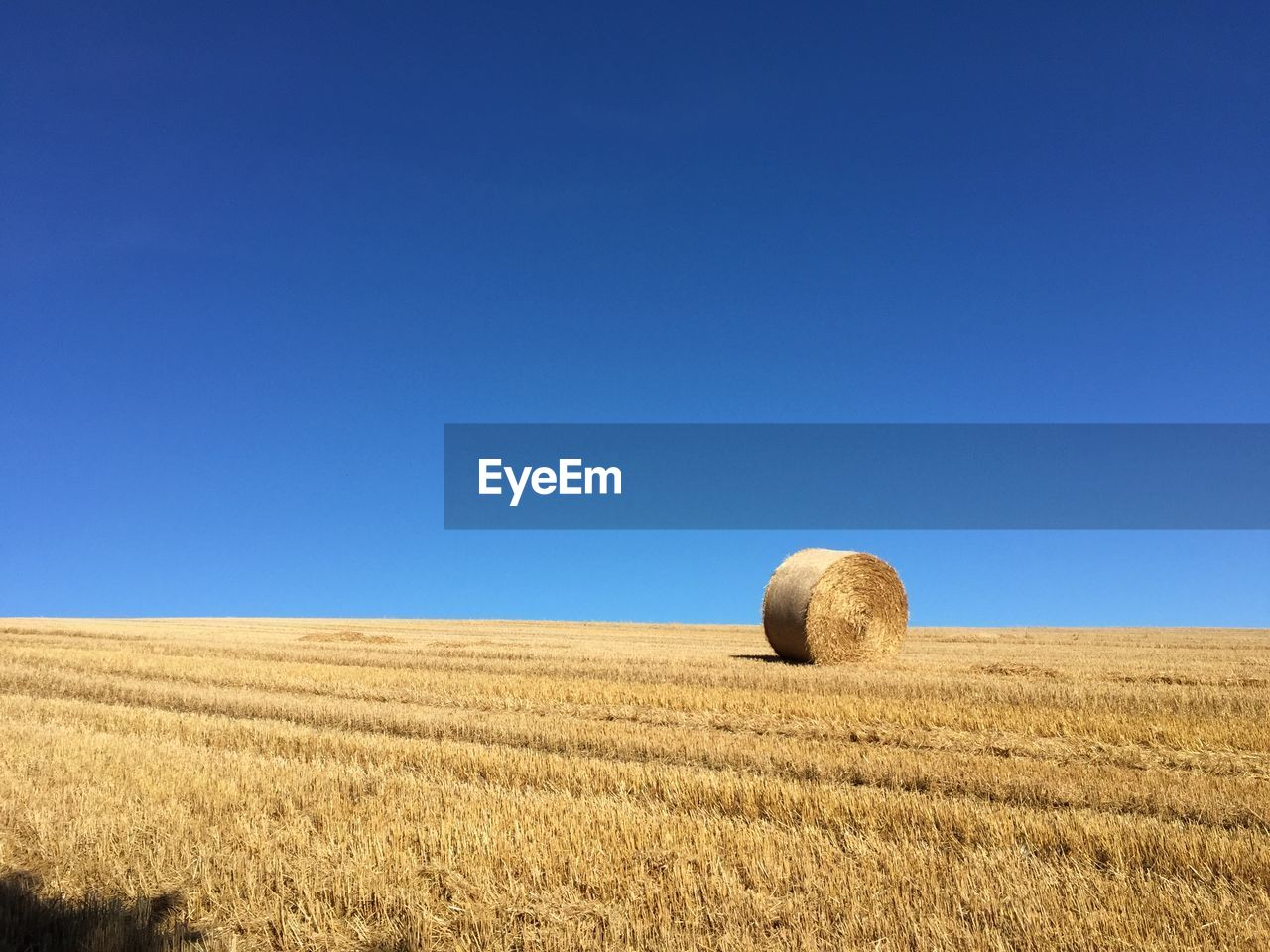landscape, land, sky, agriculture, rural scene, farm, field, blue, clear sky, copy space, bale, tranquil scene, hay, environment, nature, plant, beauty in nature, tranquility, horizon over land, day, no people, outdoors