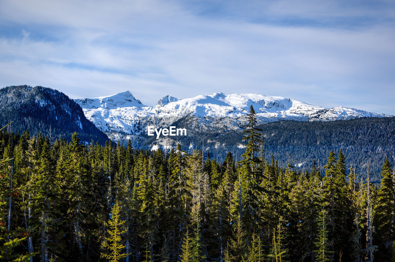 Elevated View Of Snow Covered Mountain Landscape Against Sky With Evergreen Trees