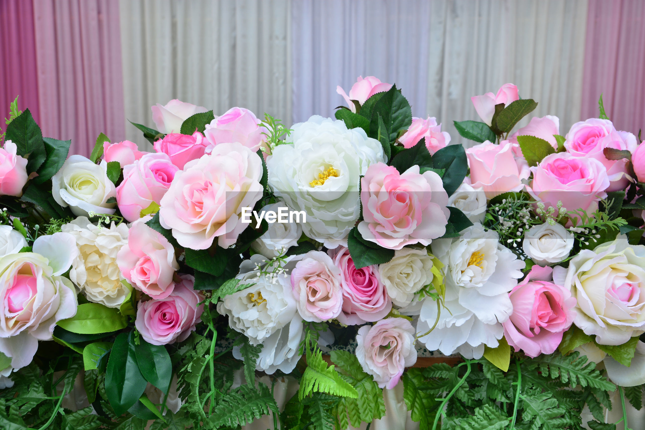 CLOSE-UP OF PINK ROSES ON BOUQUET