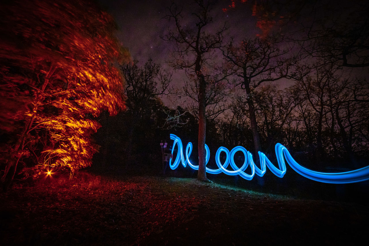 night, tree, illuminated, long exposure, glowing, plant, light painting, text, nature, no people, communication, western script, land, celebration, motion, art and craft, creativity, orange color, burning, blurred motion