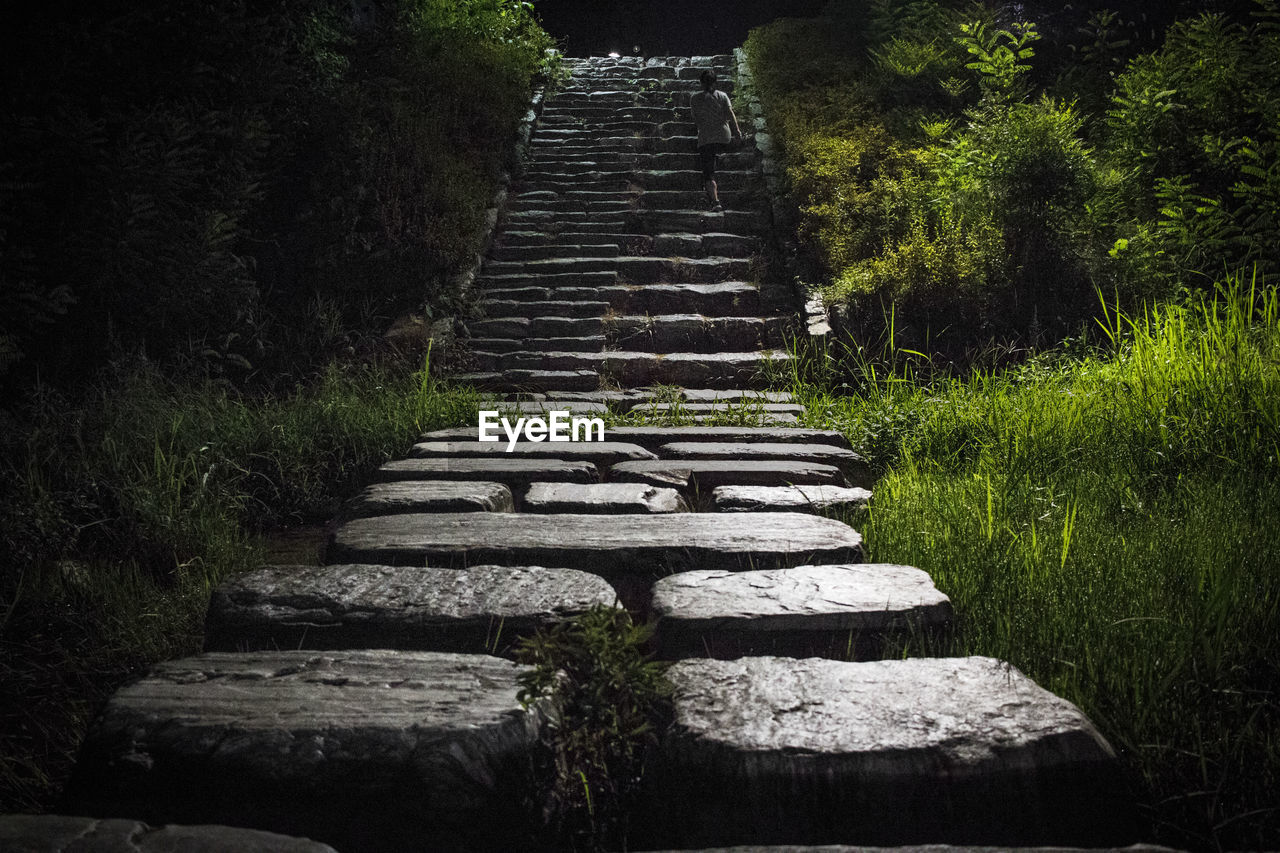 STONE STEPS LEADING TO GRASS