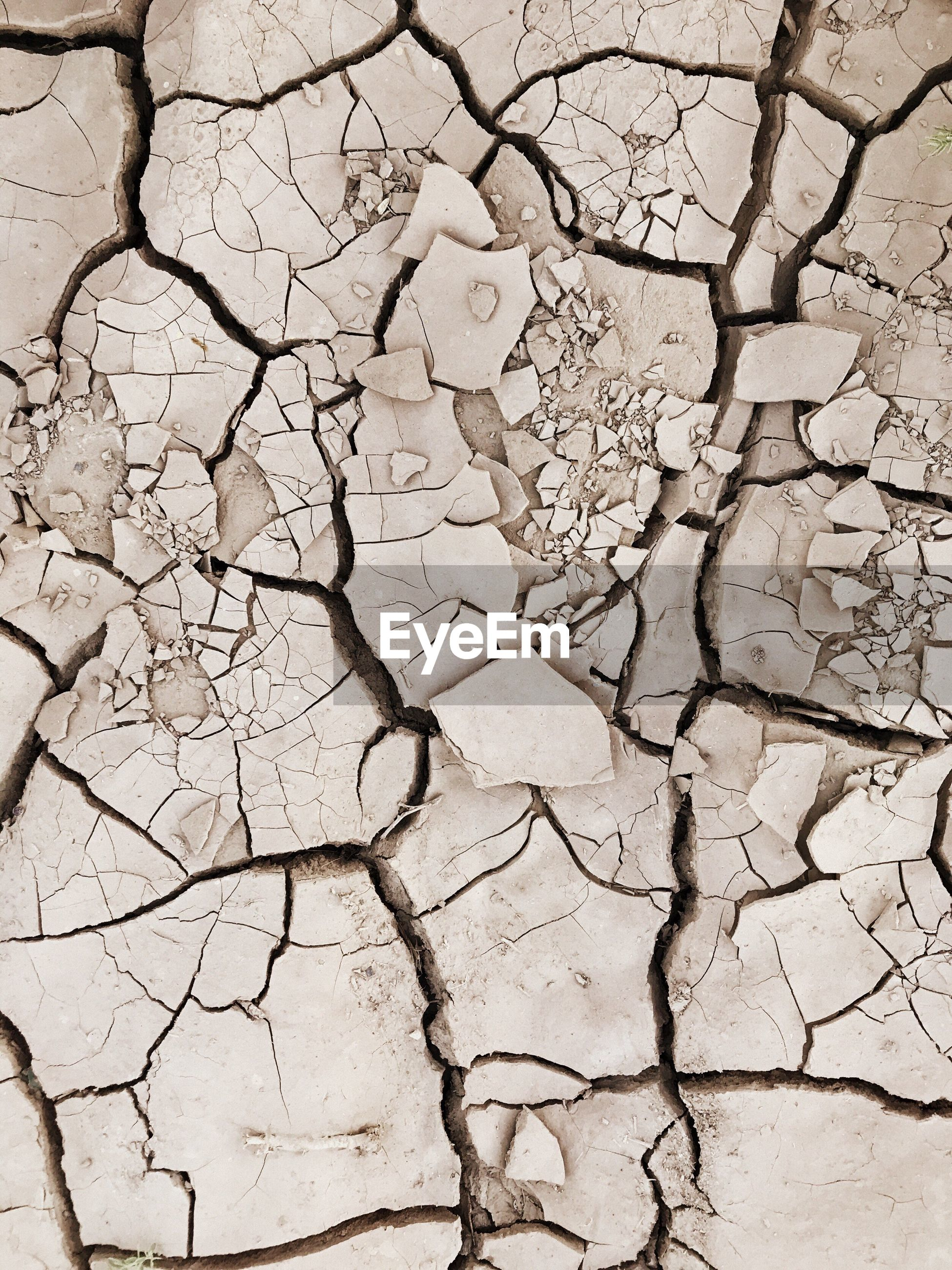 cracked, drought, environment, land, environmental issues, arid climate, global warming, textured, dry, extreme terrain, nature, backgrounds, environmental damage, bad condition, barren, mud, landscape, pattern, physical geography, summer, close-up, desert, human body part, day, outdoors, people
