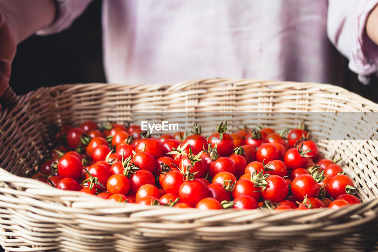 food and drink, food, basket, freshness, container, wicker, healthy eating, red, fruit, one person, wellbeing, large group of objects, focus on foreground, midsection, close-up, vegetable, selective focus, tomato, day, still life, ripe
