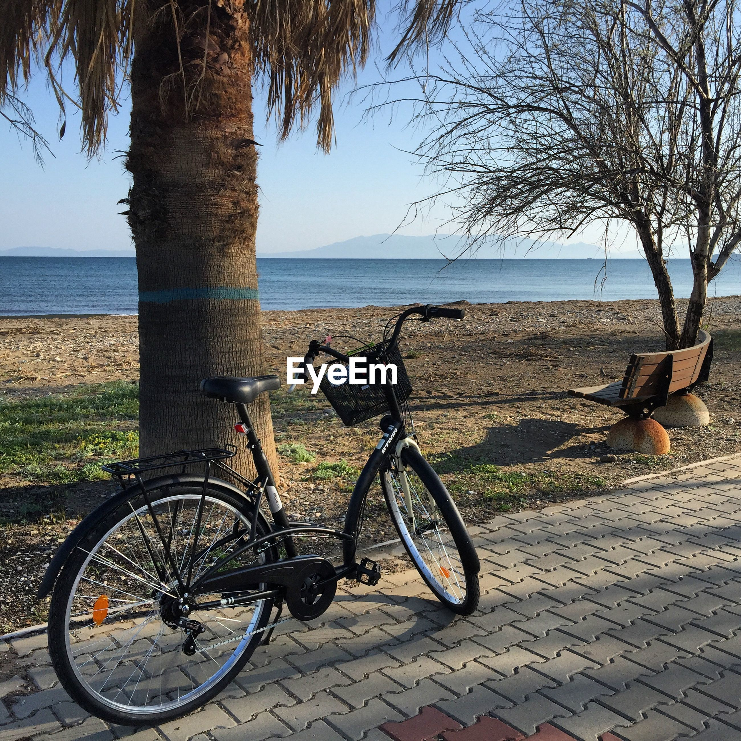bicycle, sea, water, horizon over water, tree, transportation, mode of transport, parking, beach, land vehicle, stationary, tranquility, parked, tranquil scene, shore, sky, scenics, nature, beauty in nature, shadow