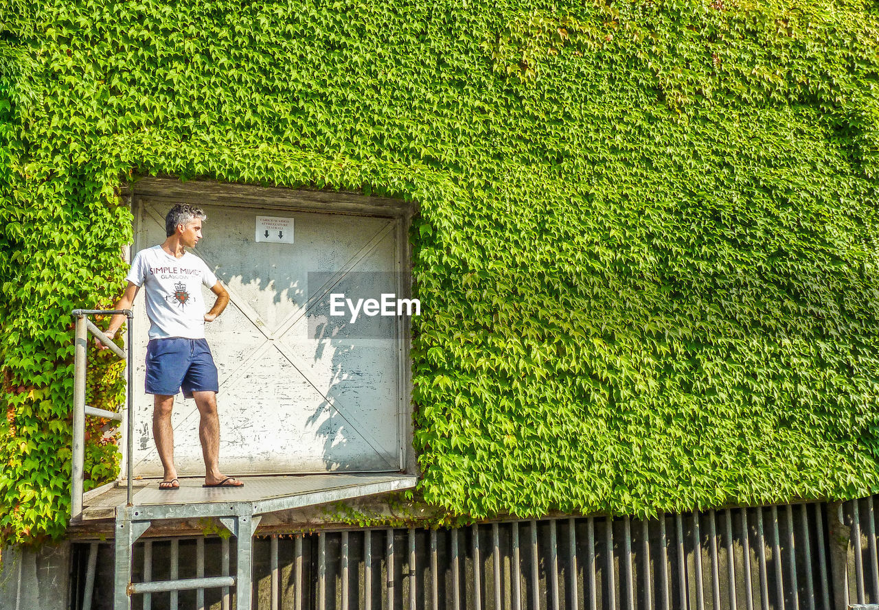 one person, plant, full length, green color, nature, architecture, day, casual clothing, leisure activity, outdoors, men, grass, standing, built structure, lifestyles, building exterior, front or back yard, rear view, hedge, shorts
