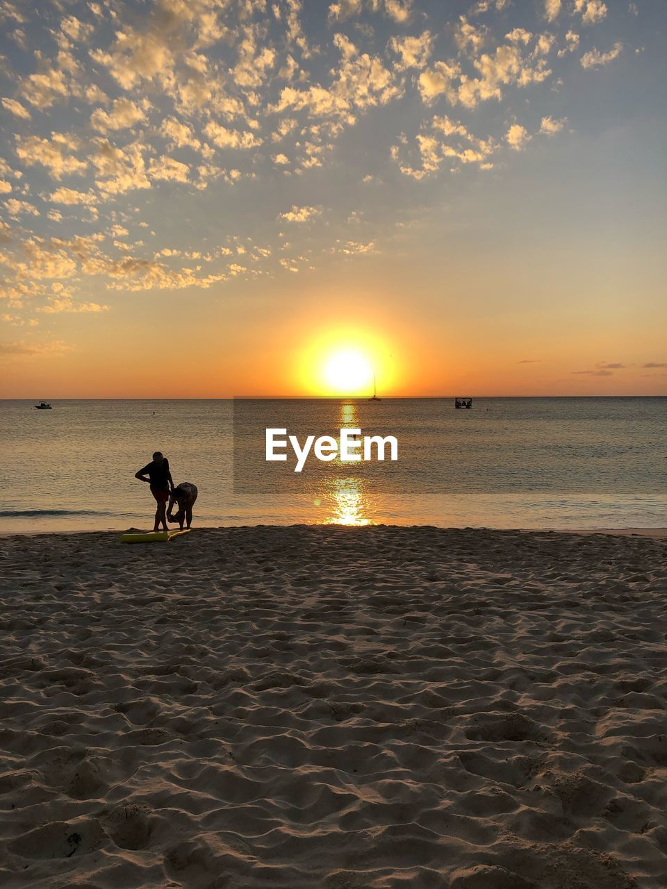 sunset, sky, water, sea, beauty in nature, land, beach, scenics - nature, horizon over water, horizon, animal themes, one animal, domestic, mammal, animal, domestic animals, orange color, sand, pets, sun, outdoors