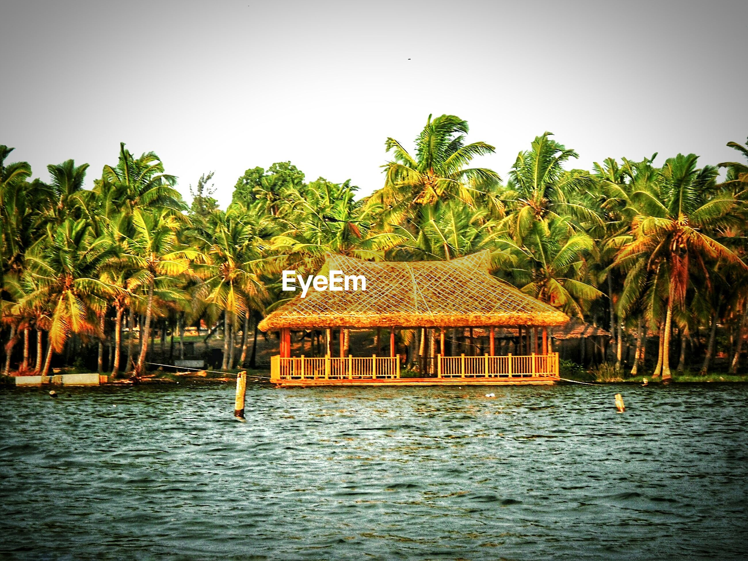 Wooden house by palm trees in front of sea