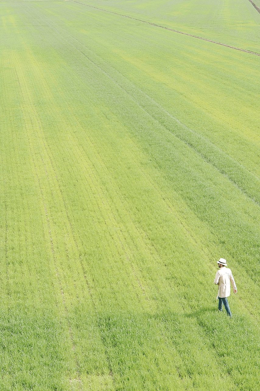High angle view of mature man walking on grassy field