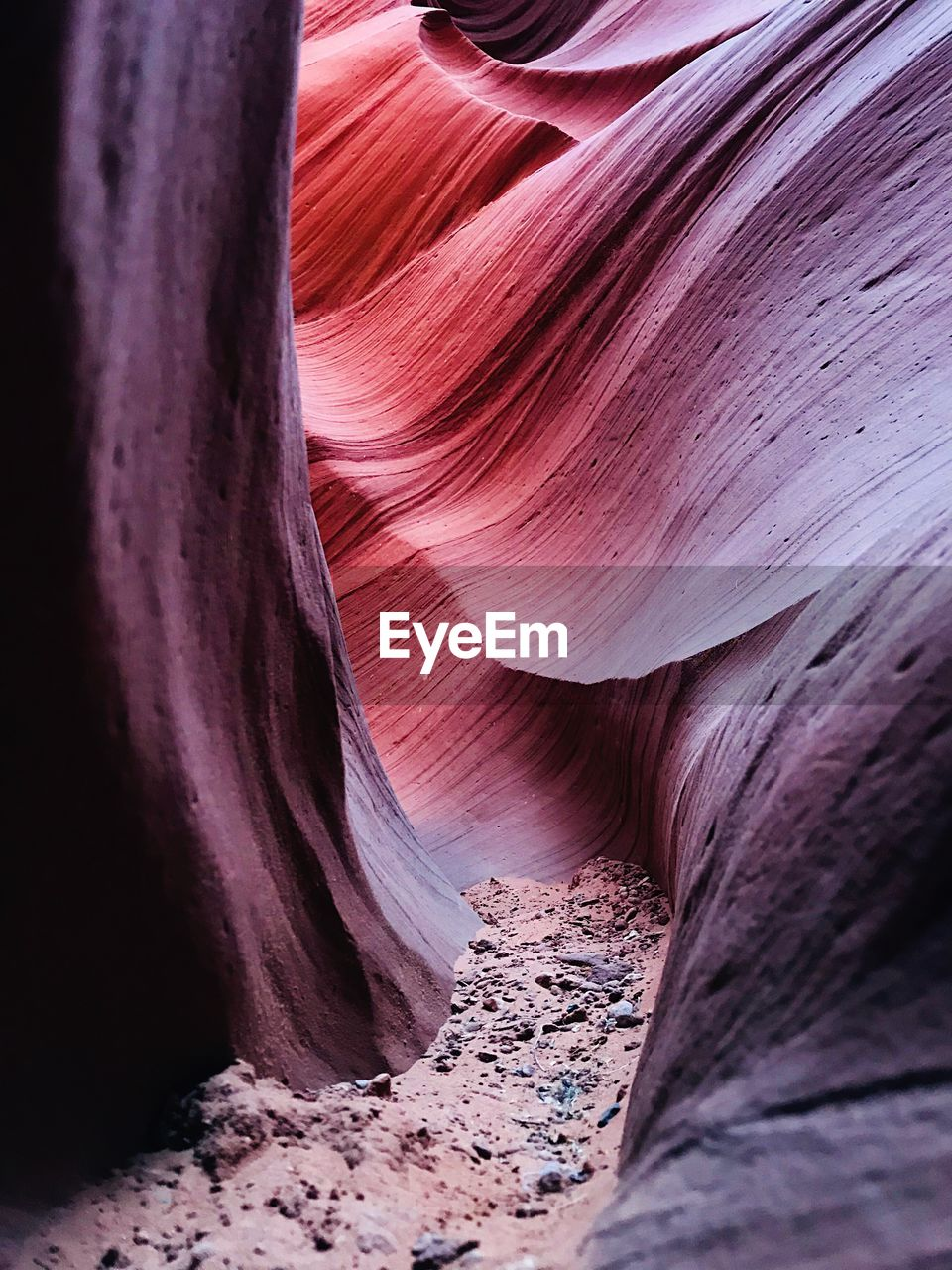 rock formation, rock - object, geology, physical geography, canyon, nature, beauty in nature, sandstone, purple, travel destinations, textured, scenics, no people, travel, tranquility, landscape, arid climate, outdoors, desert, day
