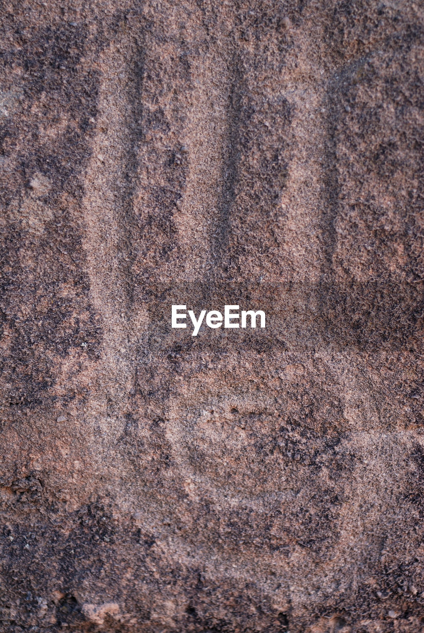 backgrounds, textured, full frame, no people, close-up, pattern, brown, old, textile, rough, day, nature, extreme close-up, animal, material, abstract, directly above, animal themes, outdoors, textured effect