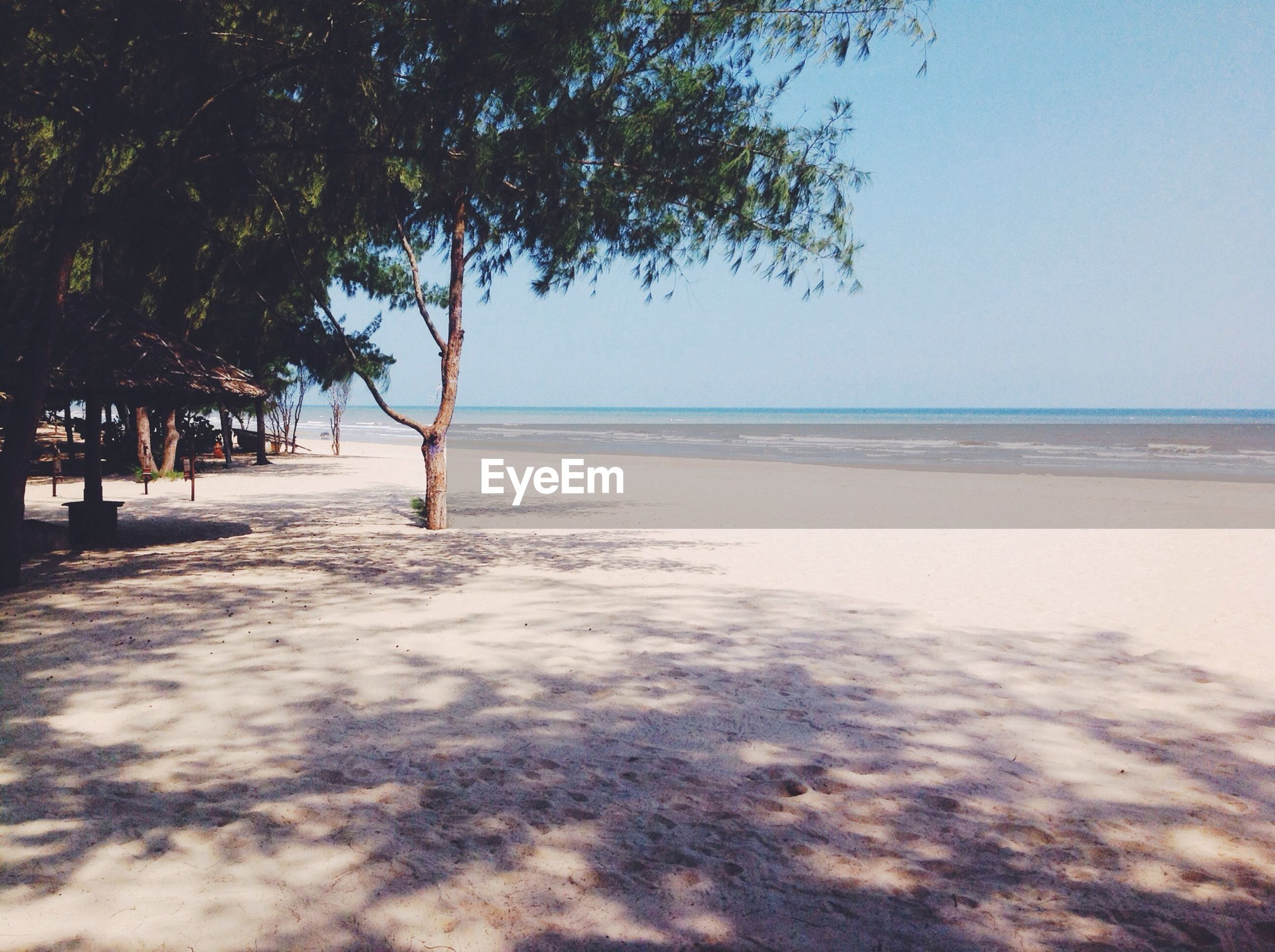 sea, horizon over water, beach, water, tranquil scene, shore, tranquility, scenics, sand, beauty in nature, tree, sky, nature, idyllic, sunlight, clear sky, remote, outdoors, day, wave