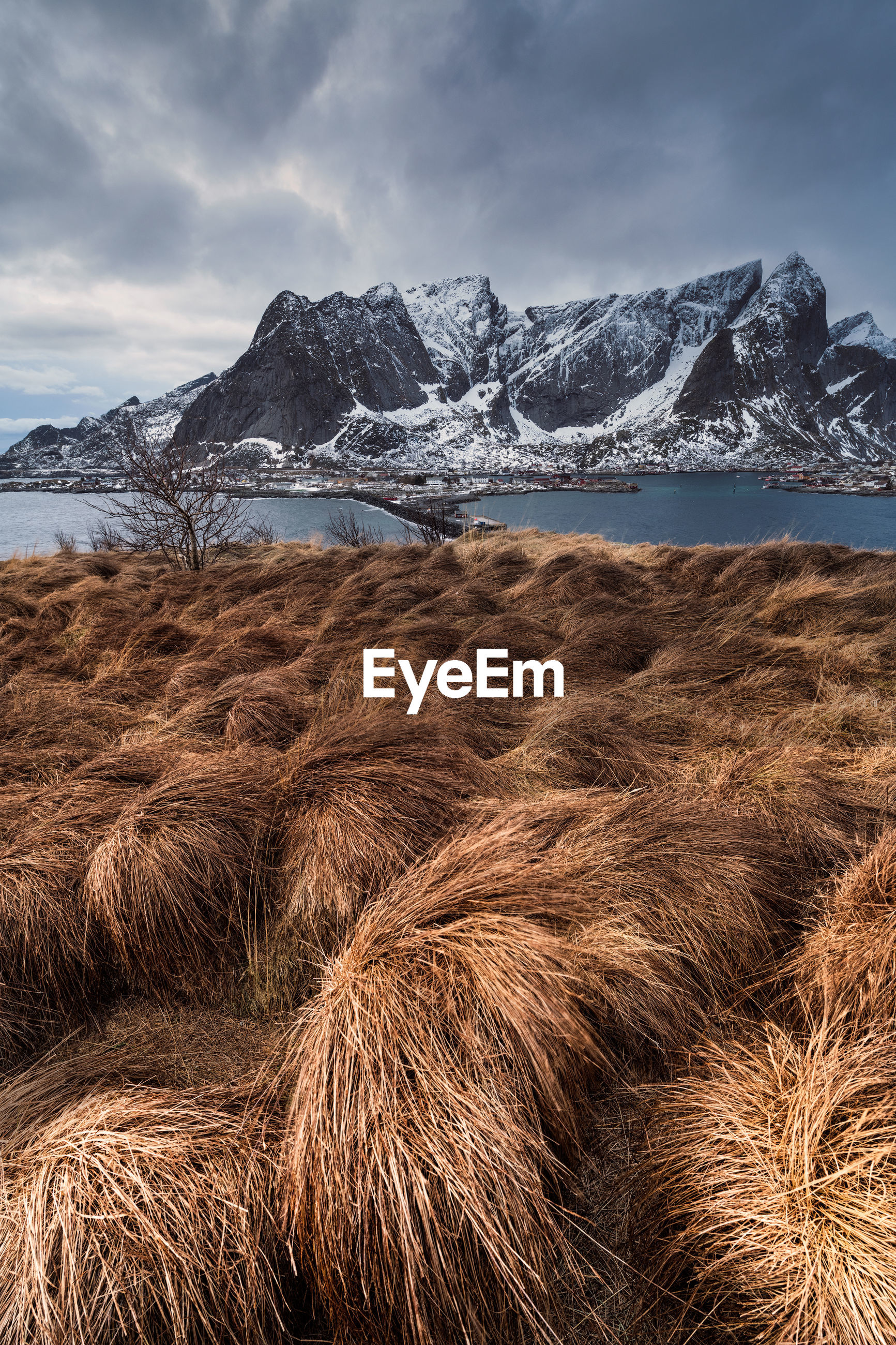 Dried grassy field by river with mountains in background