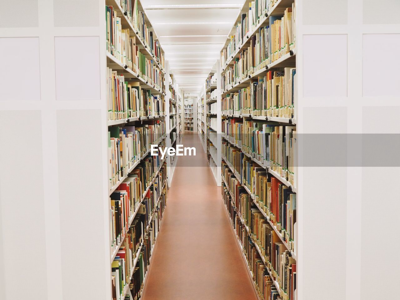 shelf, publication, book, indoors, bookshelf, education, library, large group of objects, learning, literature, abundance, no people, order, arrangement, diminishing perspective, architecture, in a row, arcade, wisdom, aisle, studying