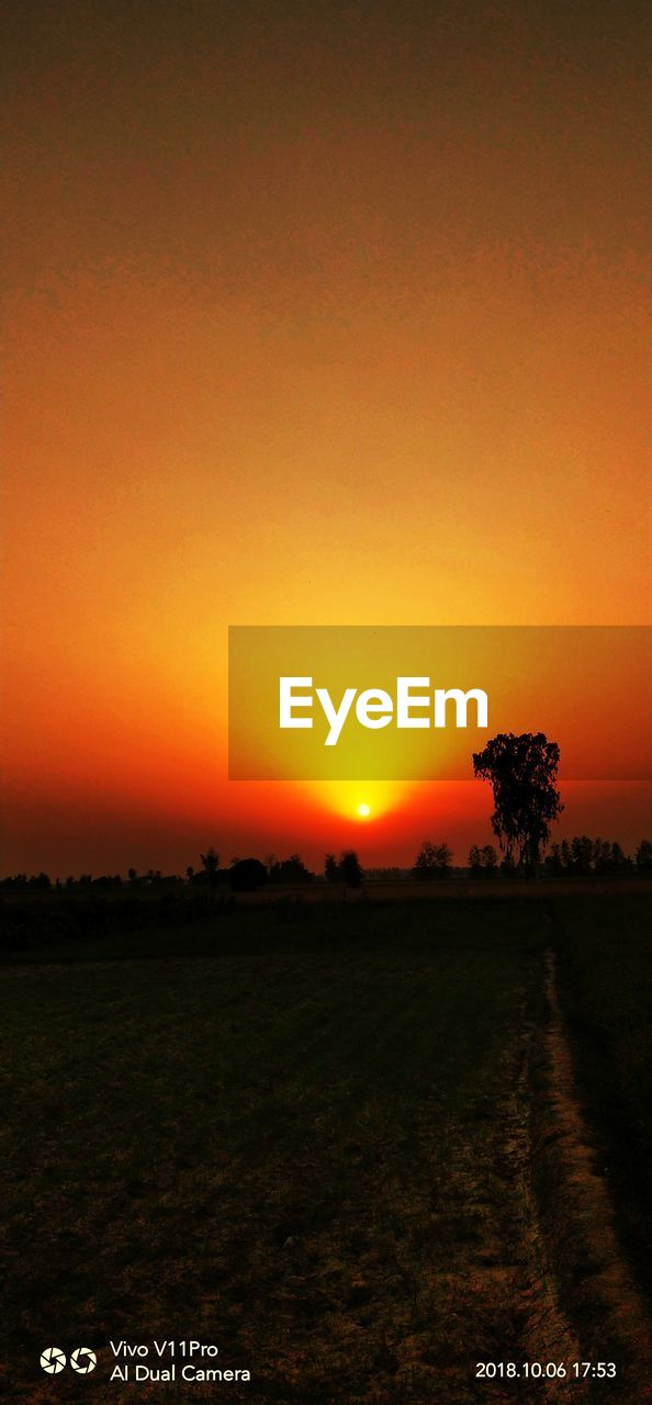 sky, sunset, orange color, beauty in nature, scenics - nature, tranquil scene, environment, landscape, tranquility, plant, field, tree, land, nature, idyllic, no people, clear sky, copy space, silhouette, outdoors