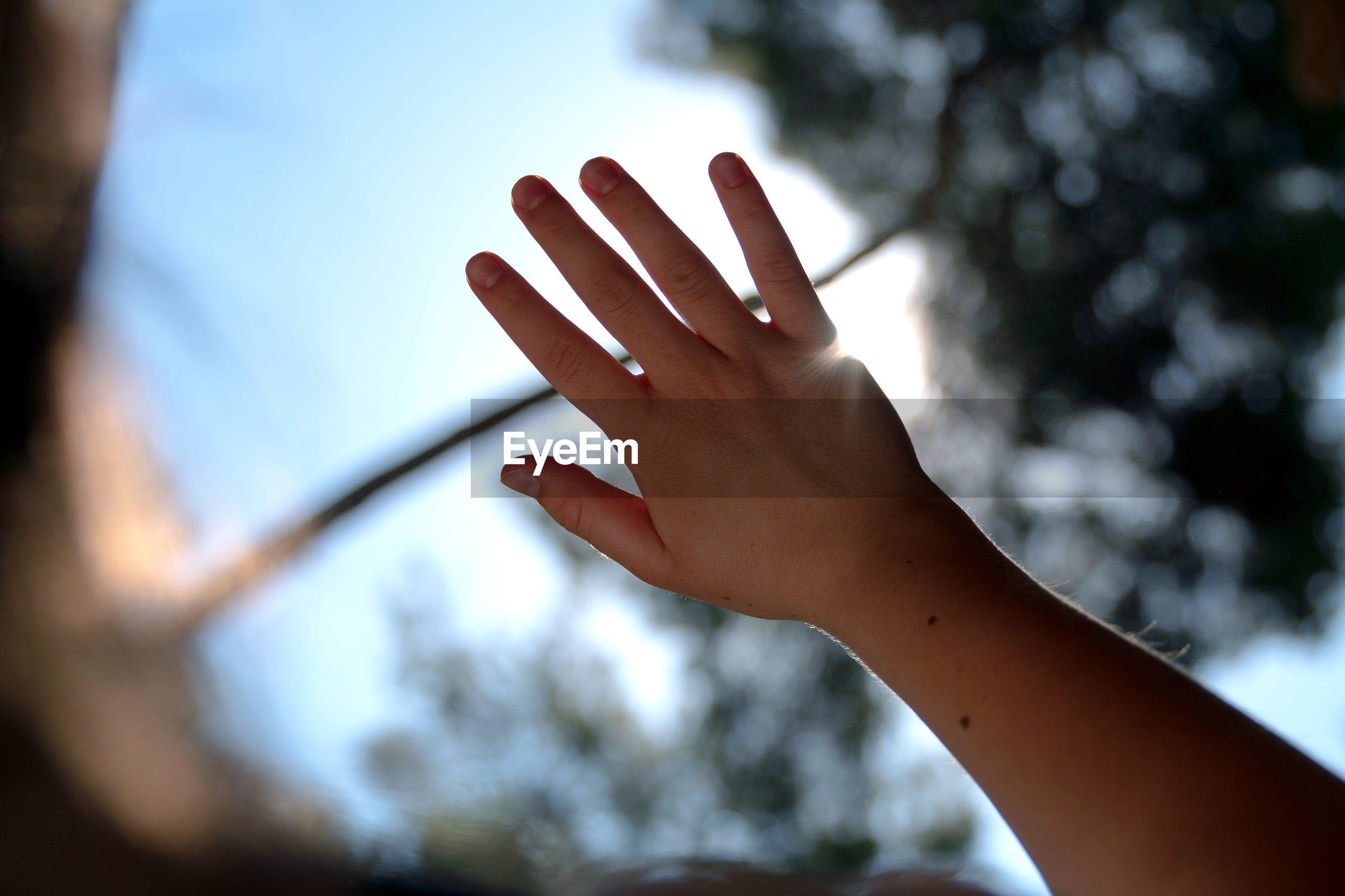 Low angle view of human hand against sky