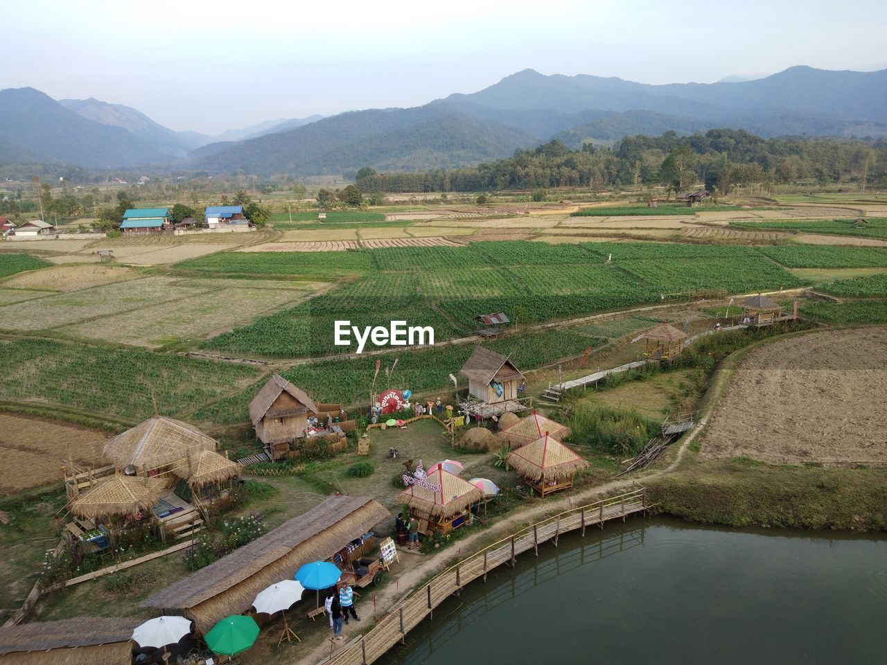 HIGH ANGLE VIEW OF PEOPLE ON AGRICULTURAL FIELD