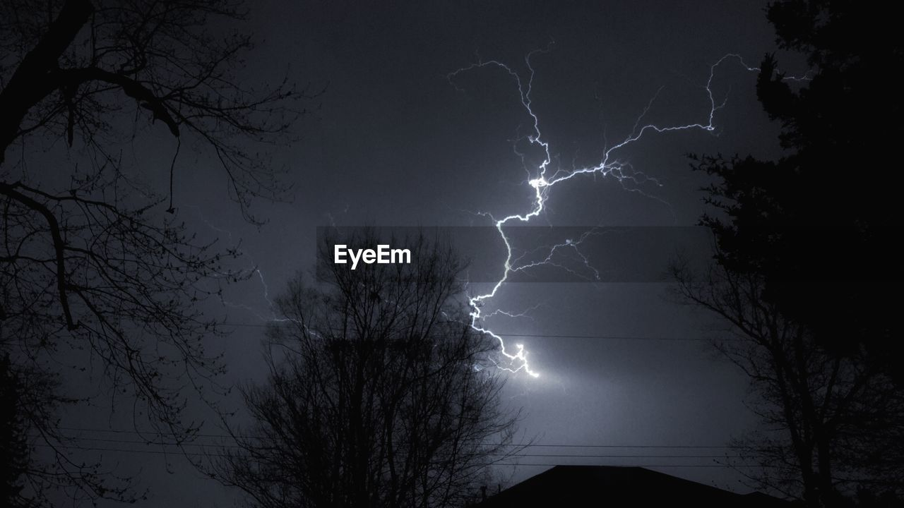 lightning, power in nature, forked lightning, weather, storm, thunderstorm, danger, night, silhouette, beauty in nature, nature, tree, low angle view, dramatic sky, no people, sky, scenics, outdoors, bare tree, storm cloud, illuminated, branch