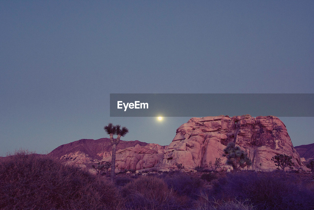 sky, moon, beauty in nature, tranquil scene, scenics - nature, tranquility, mountain, nature, tree, plant, copy space, clear sky, no people, environment, rock, landscape, full moon, non-urban scene, low angle view, rock formation, outdoors, formation, moonlight