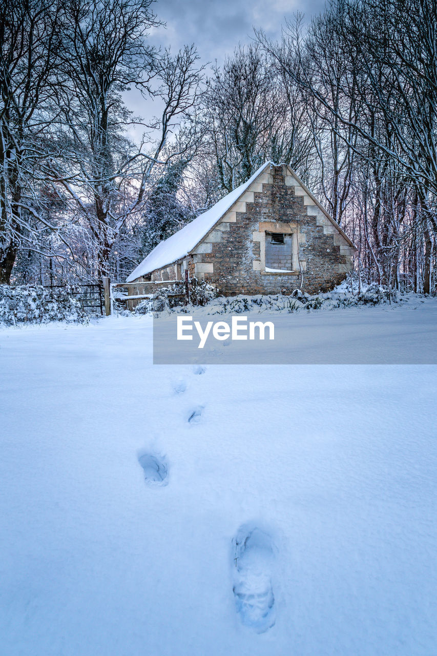 snow, cold temperature, winter, built structure, tree, architecture, building exterior, bare tree, building, nature, no people, house, landscape, day, beauty in nature, plant, land, scenics - nature, field, outdoors, cottage, powder snow