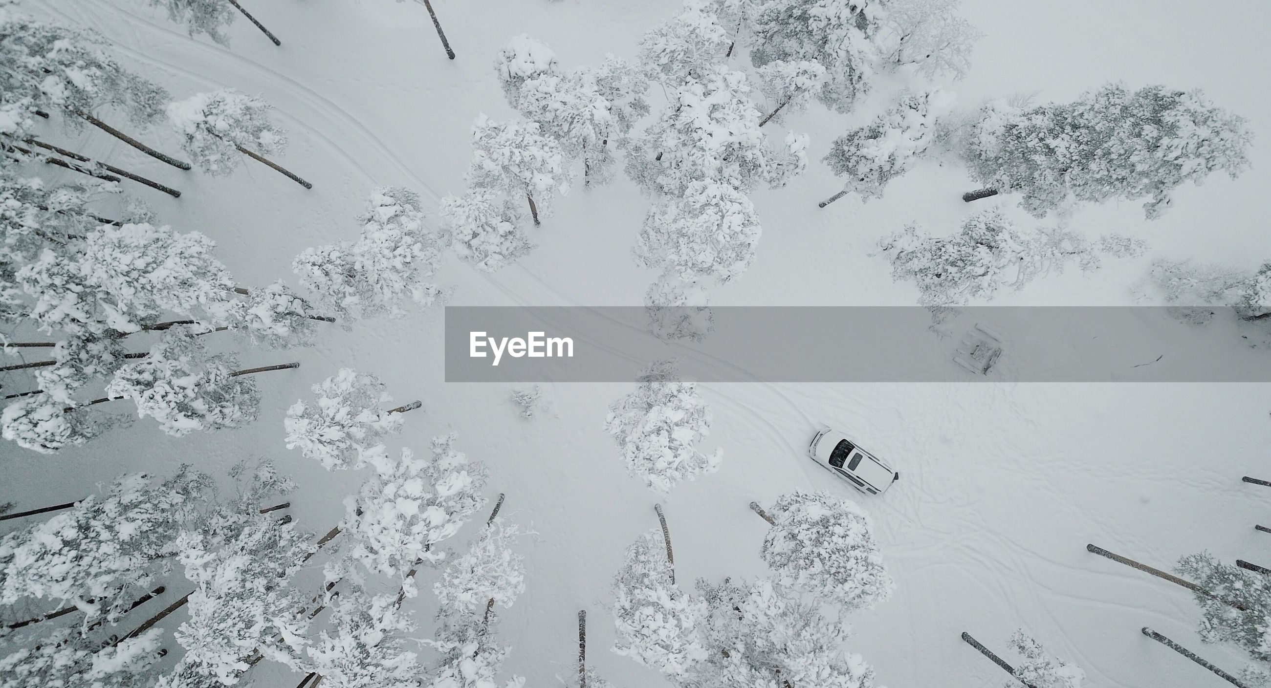HIGH ANGLE VIEW OF SNOW COVERED TREES AND MOUNTAINS