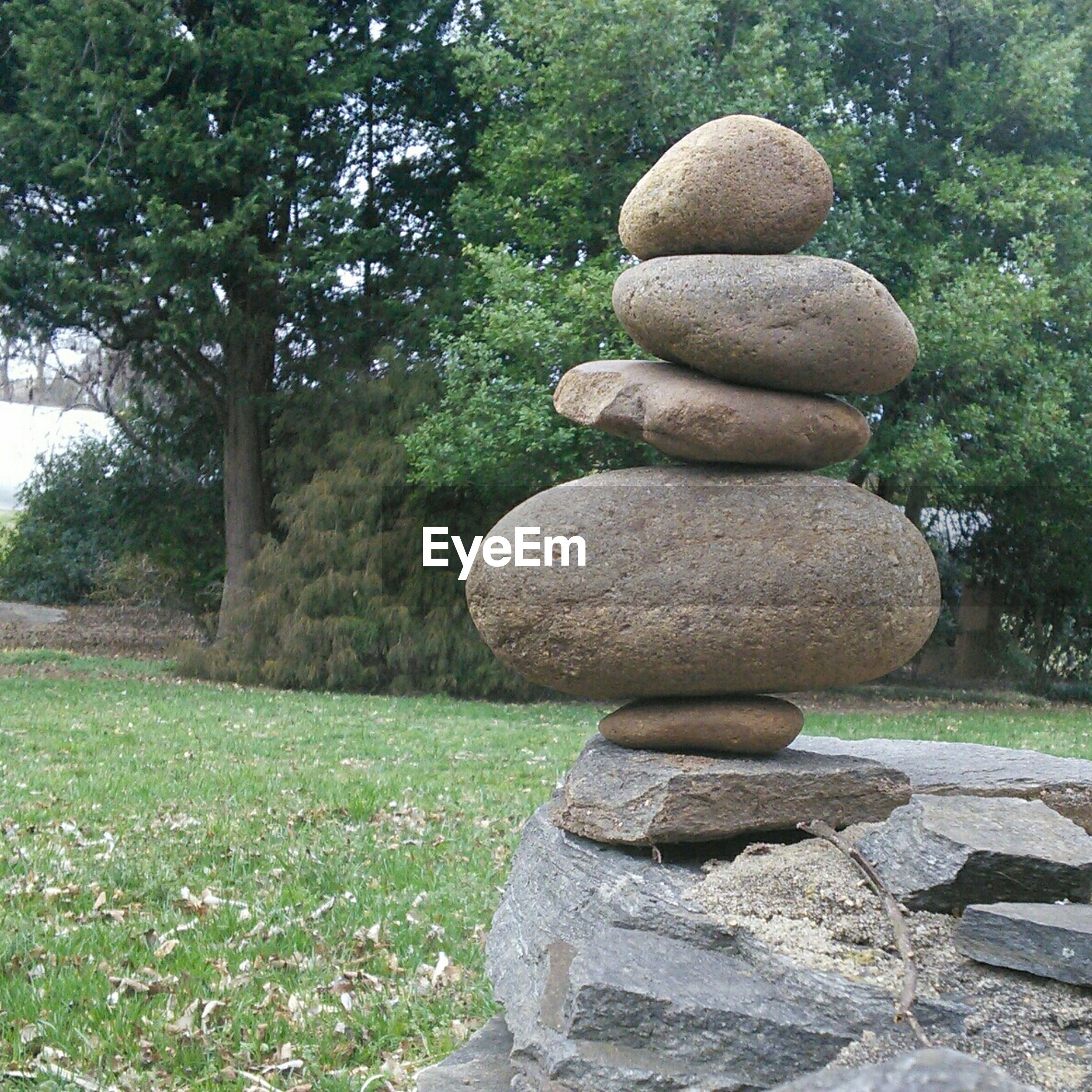 tree, sculpture, statue, stack, growth, stone - object, stone material, human representation, art, park - man made space, green color, creativity, grass, balance, tranquility, art and craft, nature, stone, rock - object