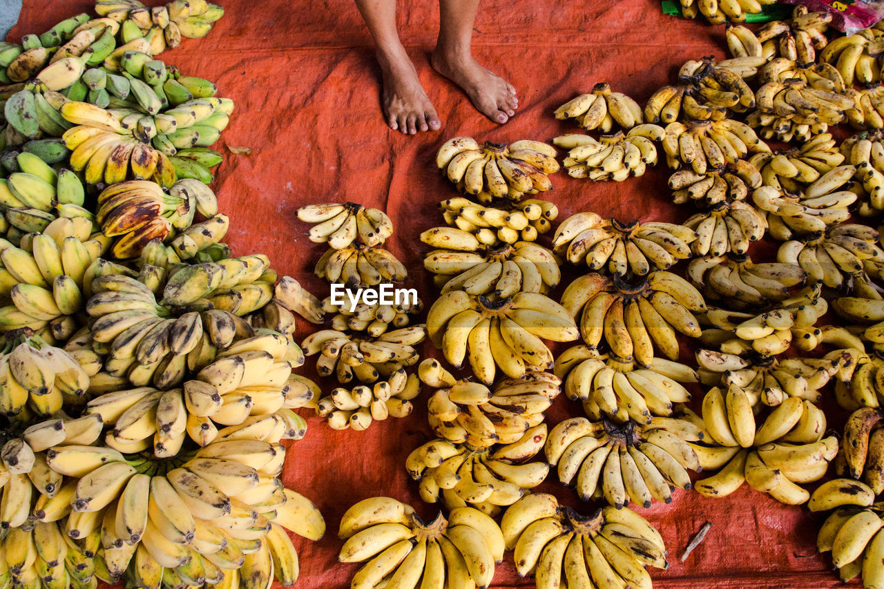 food and drink, food, healthy eating, freshness, large group of objects, wellbeing, abundance, human body part, hand, fruit, market, human hand, vegetable, choice, one person, retail, banana, variation, day, market stall, ripe