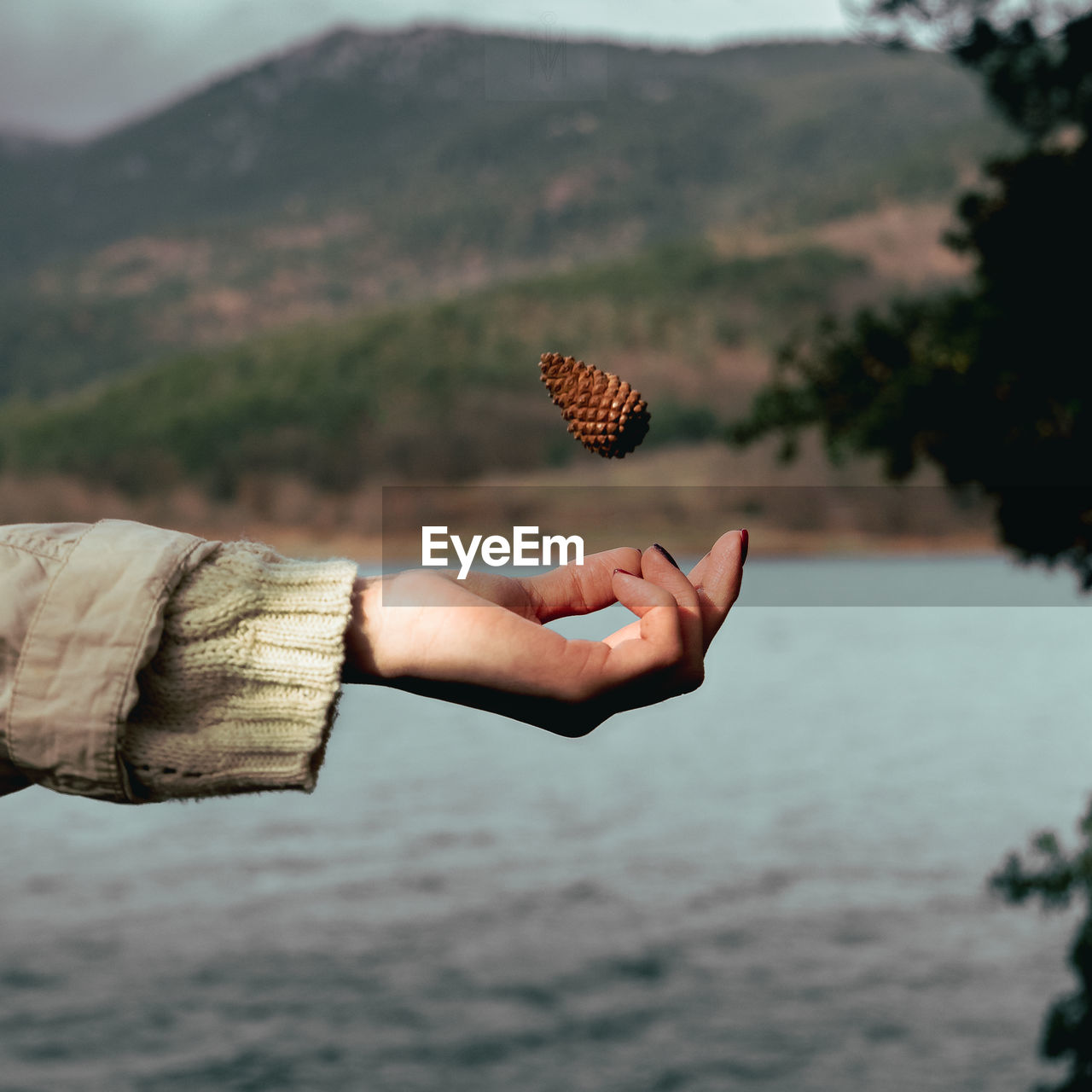 Close-up of woman hand throwing pine cone mid-air by lake