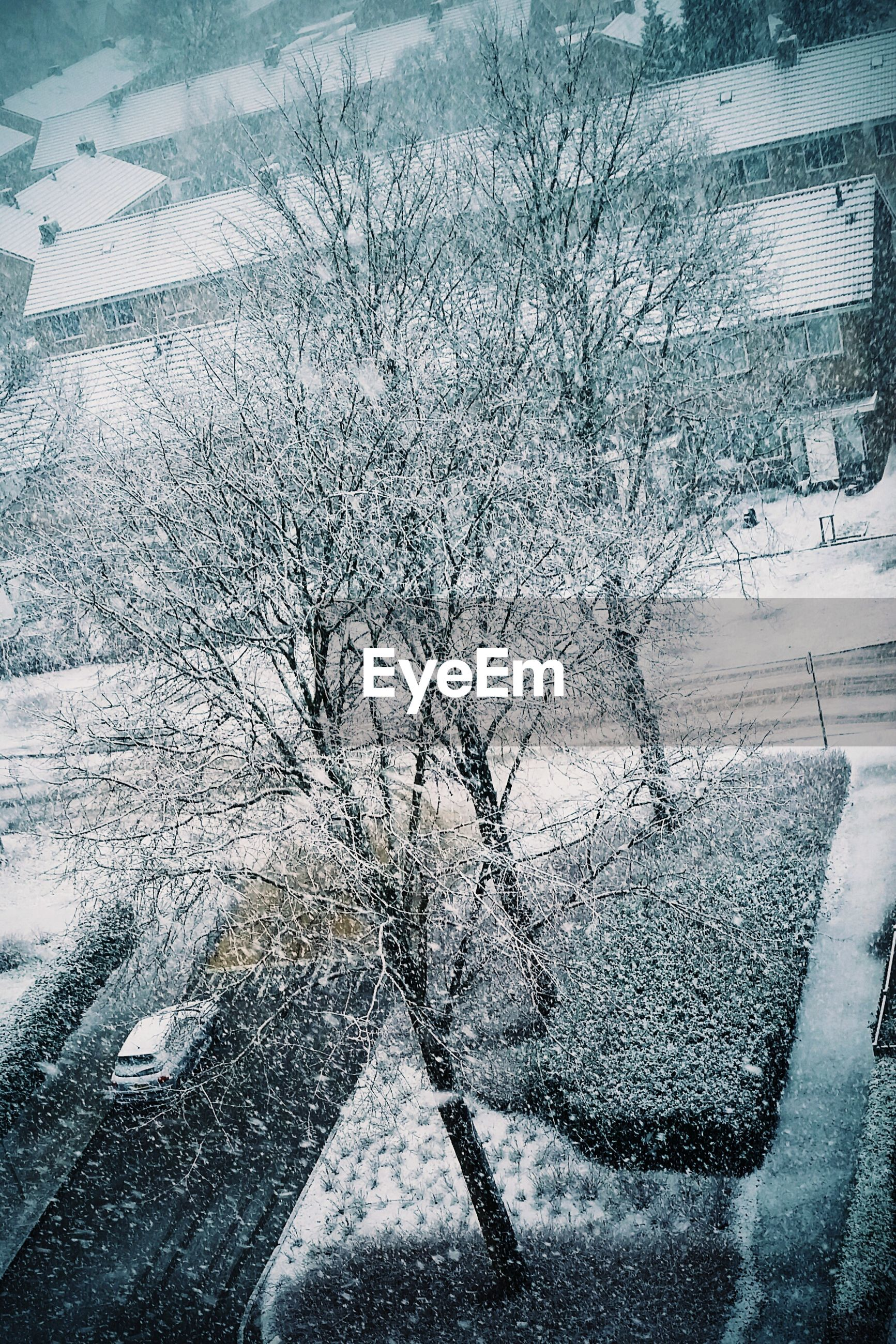 Snow Day ❄ Relaxing Taking Photos Check This Out Hanging Out Hello World Taking Photos EyeEm Best Shots Walking Around Streetphotography