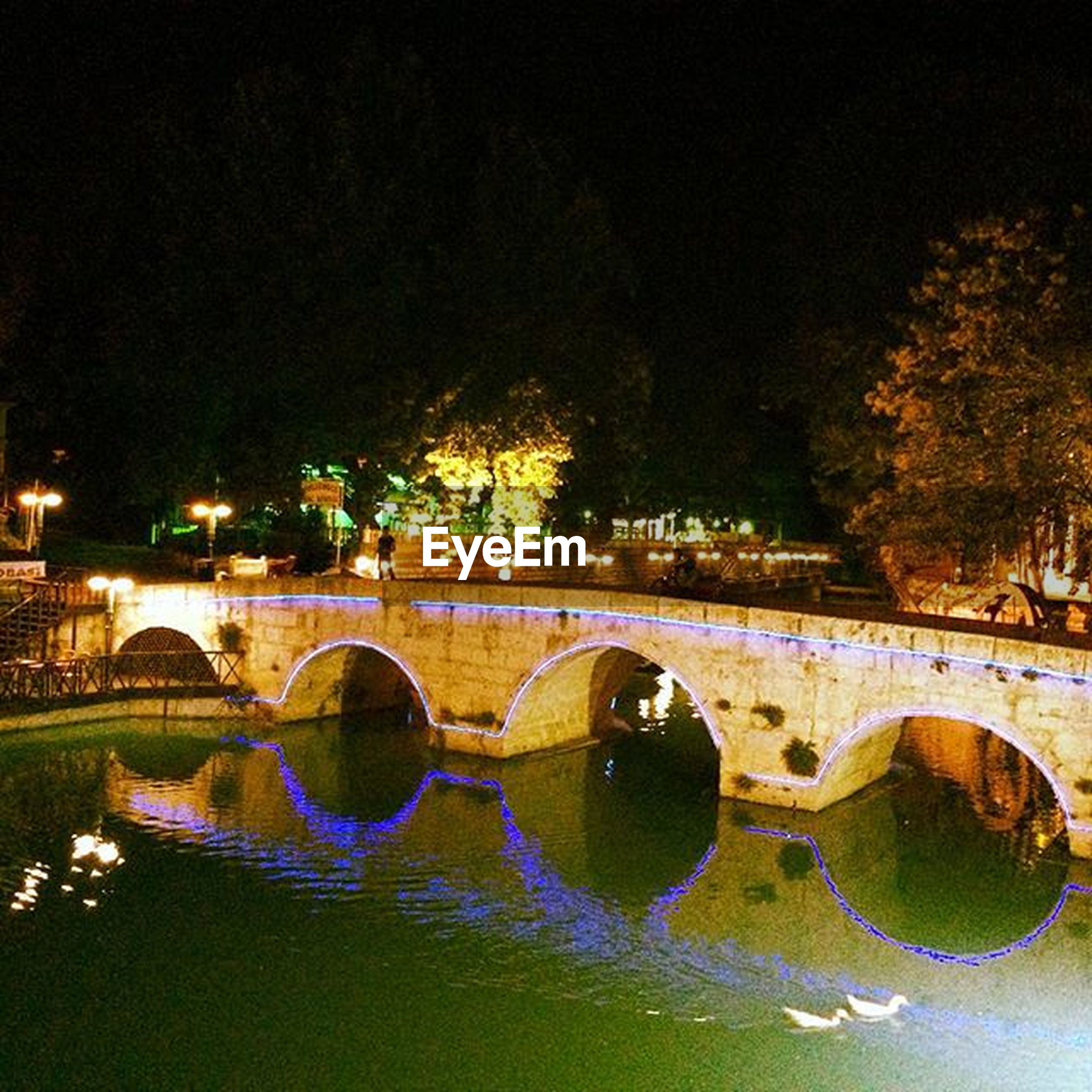 water, bridge - man made structure, river, night, architecture, tree, arch, connection, built structure, reflection, illuminated, outdoors, waterfront, growth, no people, nature, building exterior, city, sky