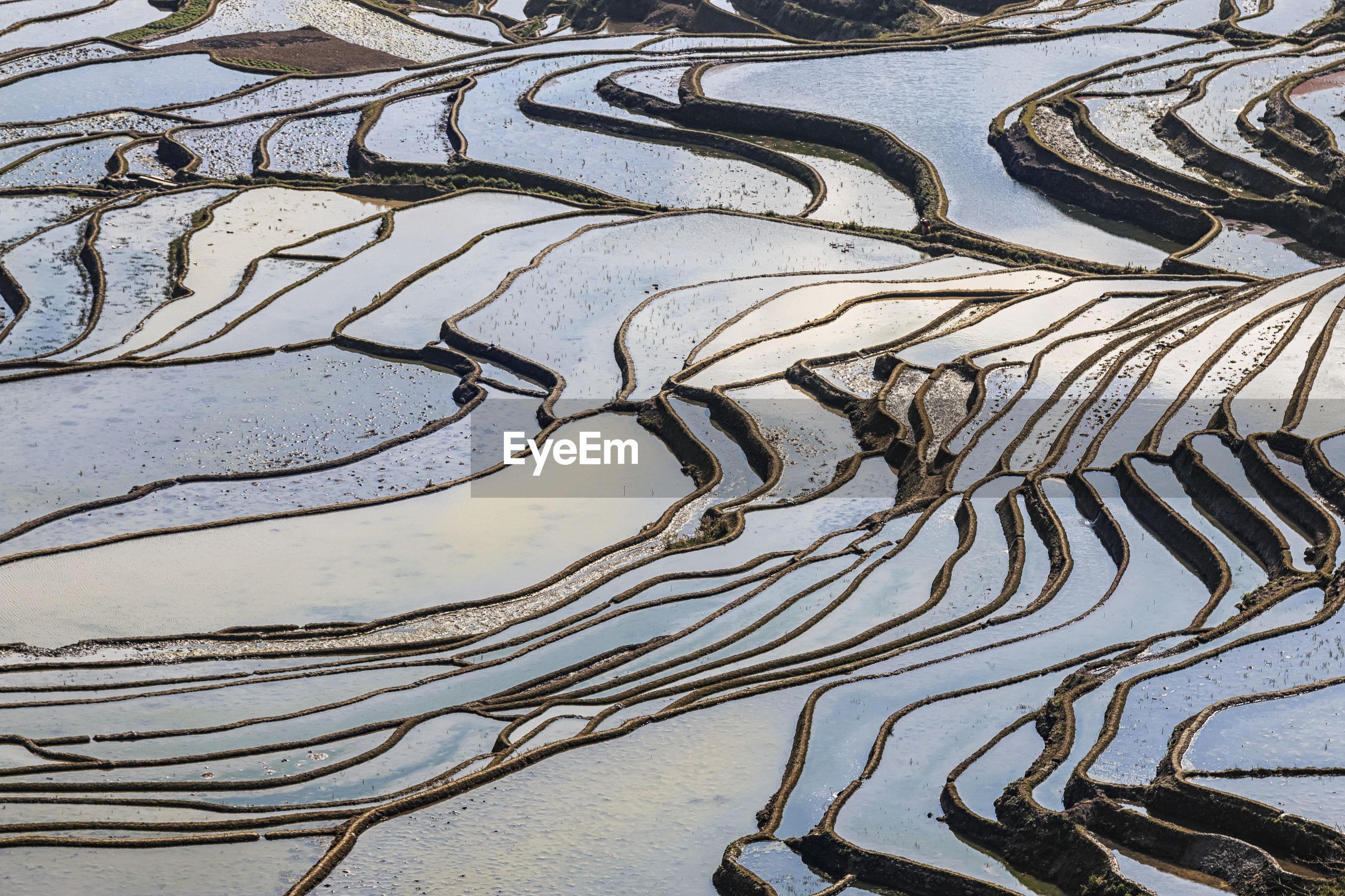 Full frame shot of terraced fields