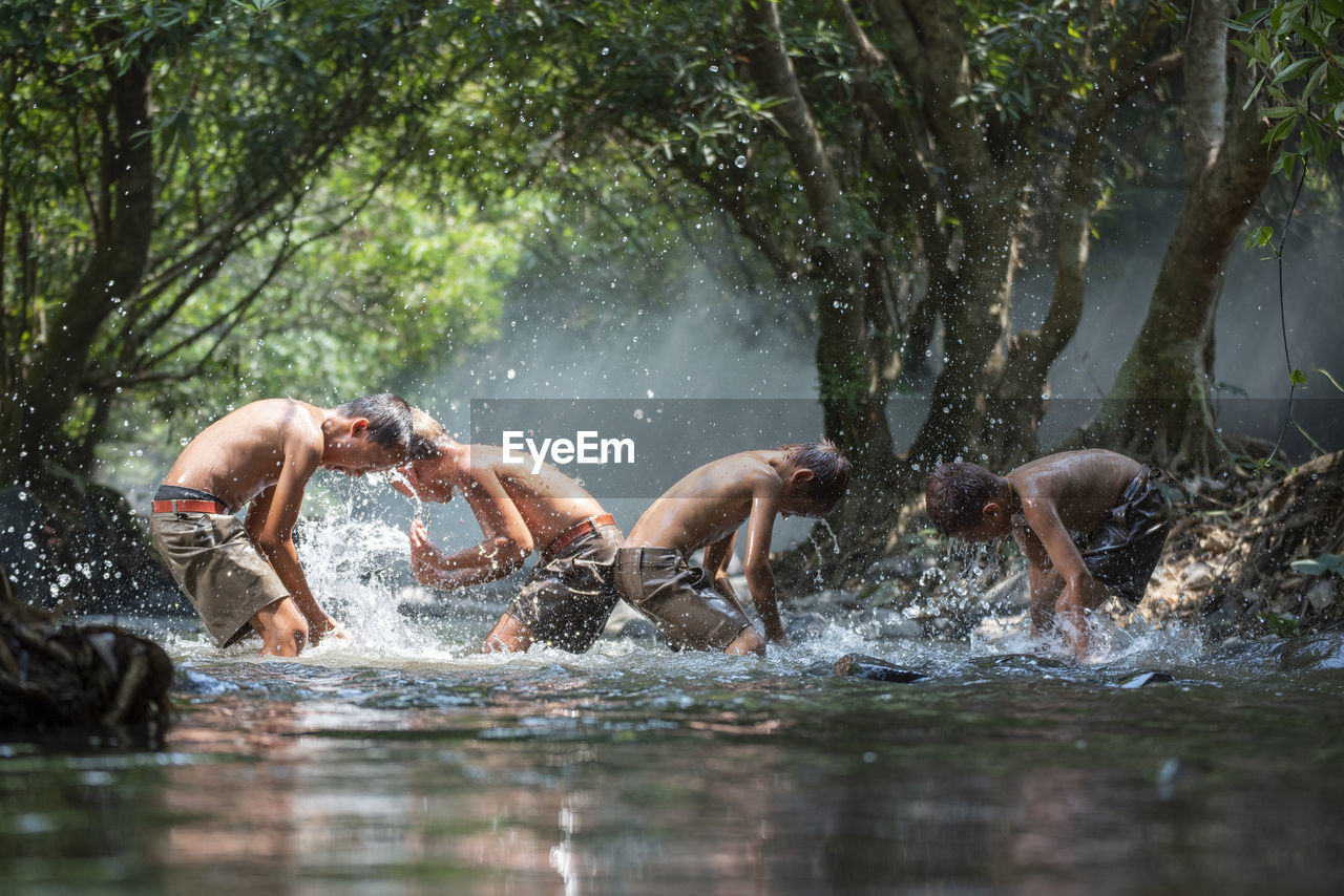 water, tree, splashing, nature, adult, men, motion, day, plant, shirtless, people, two people, enjoyment, swimming, leisure activity, togetherness, lake, outdoors, mature men