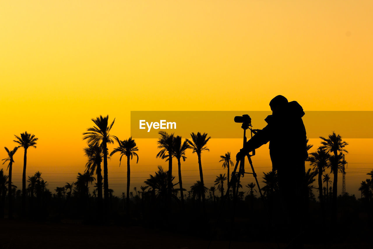 Silhouette man photographing palm trees against orange sky