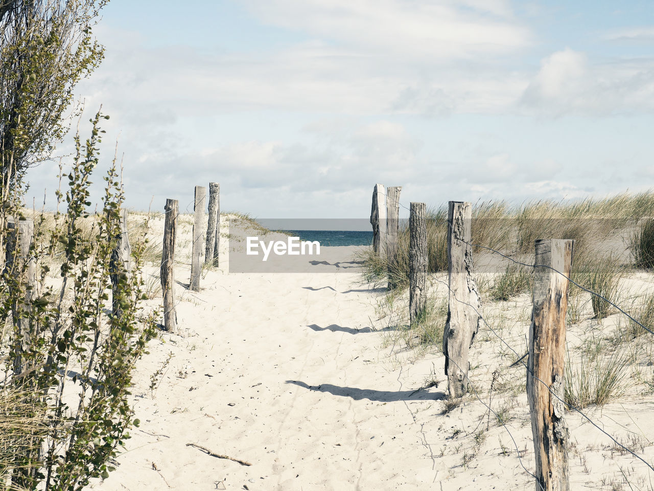 sky, tranquility, tranquil scene, cloud - sky, land, scenics - nature, nature, beauty in nature, beach, plant, sea, sand, horizon, day, water, wood - material, non-urban scene, landscape, post, wooden post, no people, horizon over water, outdoors