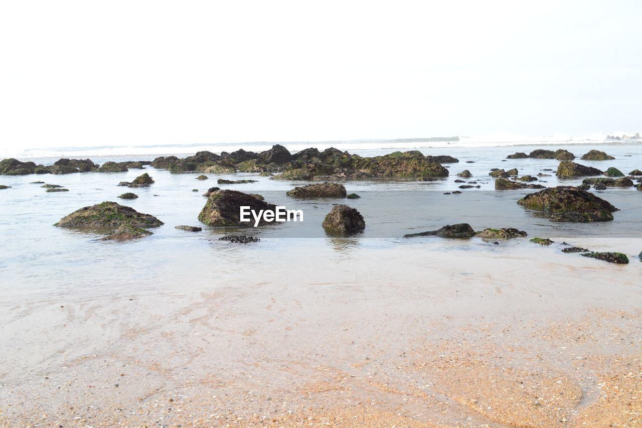 sea, nature, no people, rock - object, water, clear sky, scenics, beach, beauty in nature, sky, day, horizon over water, outdoors