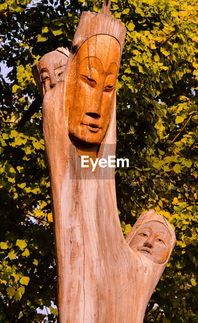 tree, plant, art and craft, representation, no people, human representation, craft, sculpture, day, creativity, nature, wood - material, tree trunk, trunk, low angle view, statue, outdoors, focus on foreground, male likeness, carving - craft product, carving