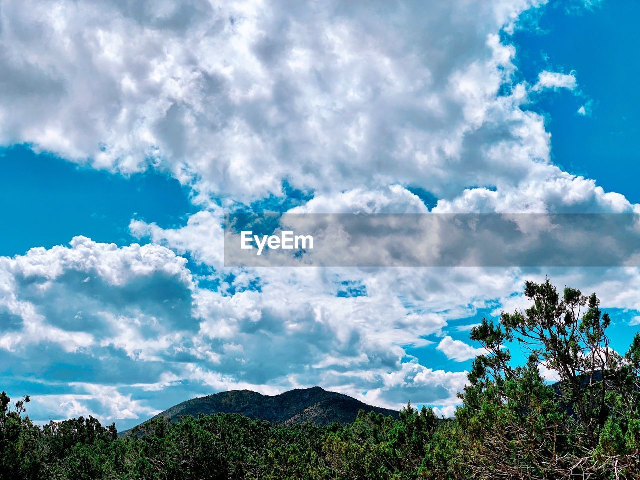 cloud - sky, sky, tree, plant, beauty in nature, scenics - nature, tranquility, tranquil scene, day, nature, no people, blue, growth, non-urban scene, outdoors, mountain, green color, low angle view, landscape, idyllic, turquoise colored