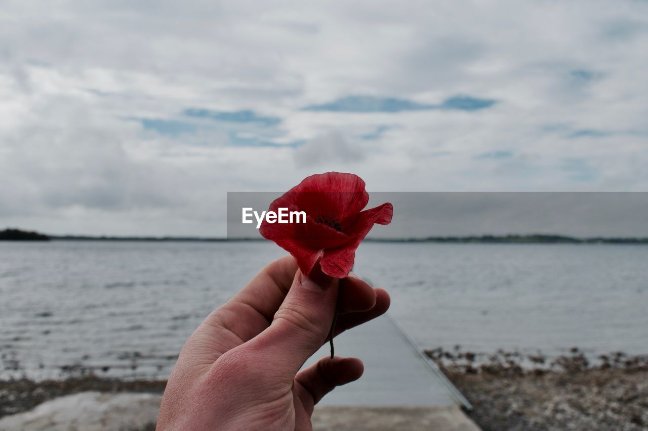 Close-Up Of Hand Holding Red Flower Against Sea