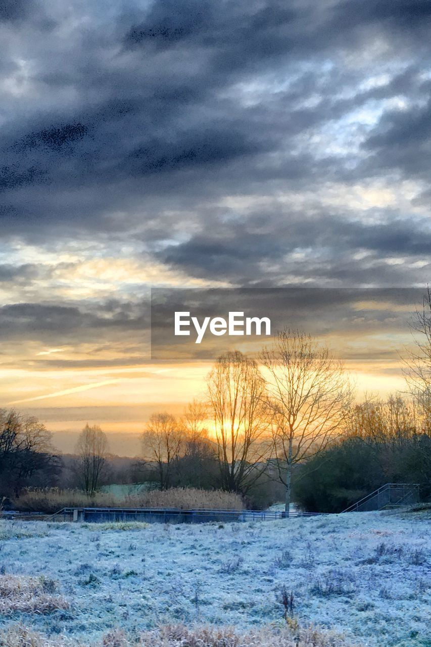cloud - sky, sky, snow, winter, cold temperature, beauty in nature, sunset, scenics - nature, tranquility, tranquil scene, tree, no people, bare tree, nature, plant, field, land, non-urban scene, landscape, outdoors, cold
