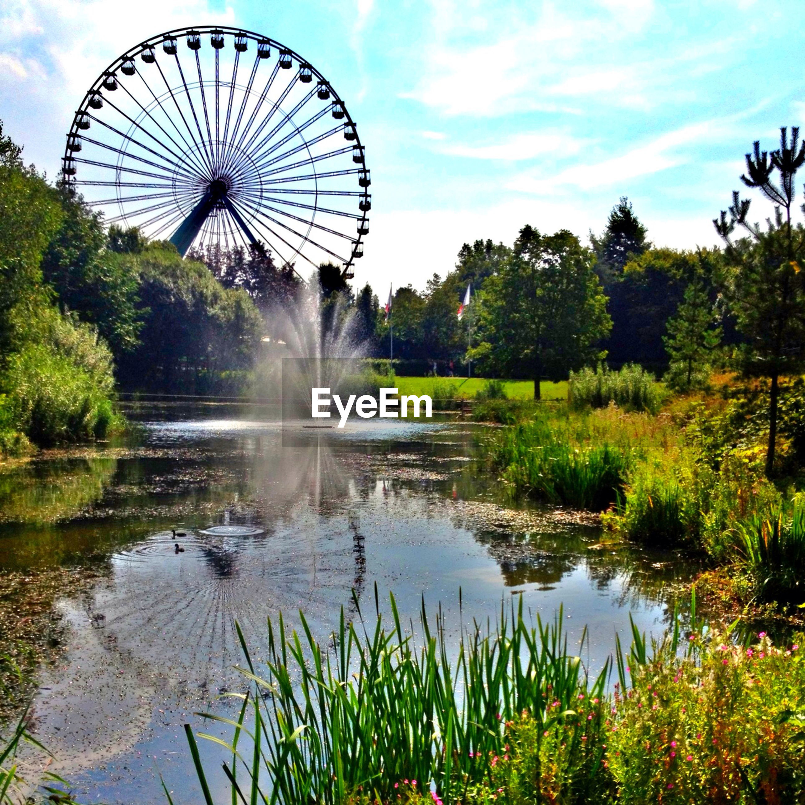 Ferris wheel against sky with lake and plants in foreground